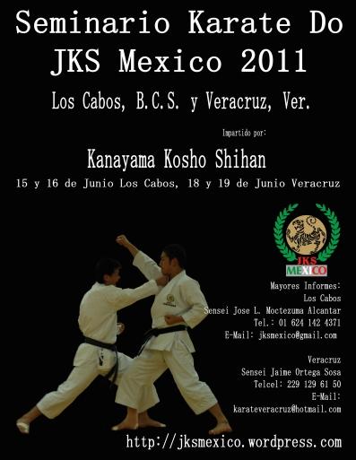Seminario internacional 2011-2